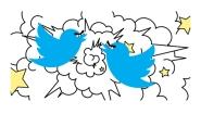 fighting twitter birds
