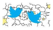 fighting twitter birds